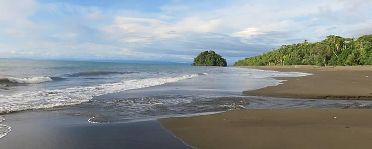 Le biodiversità del paese dalle Ande al Pacifico