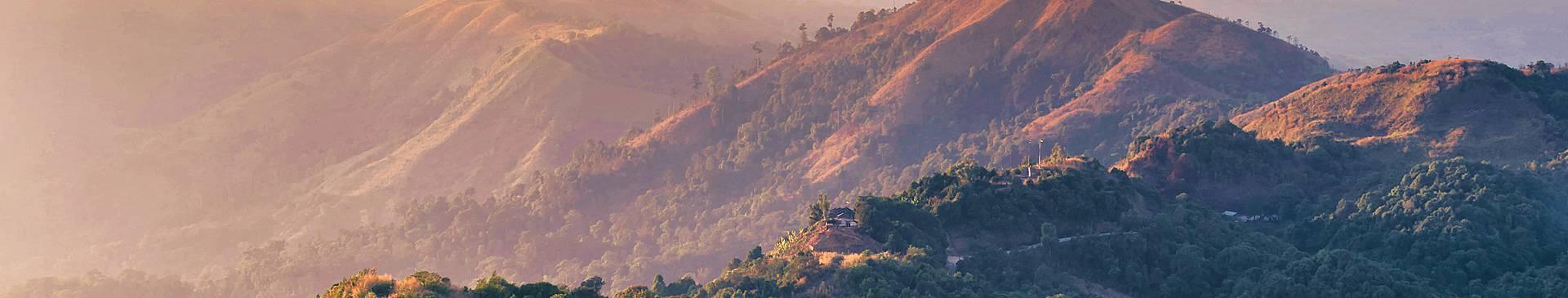 Rainforest tours in Burma
