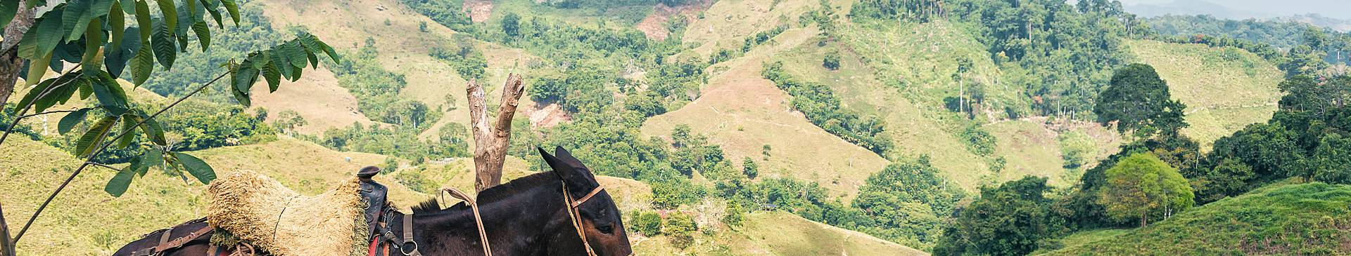 Colombia off-the-beaten-track