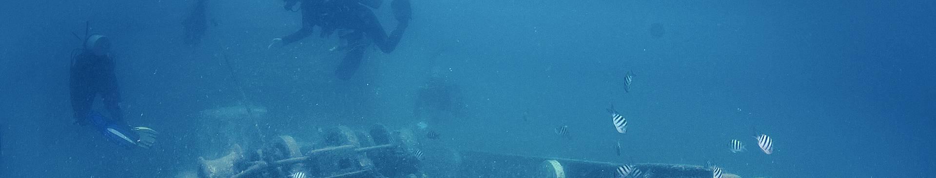 Plongée & Snorkeling en République Dominicaine