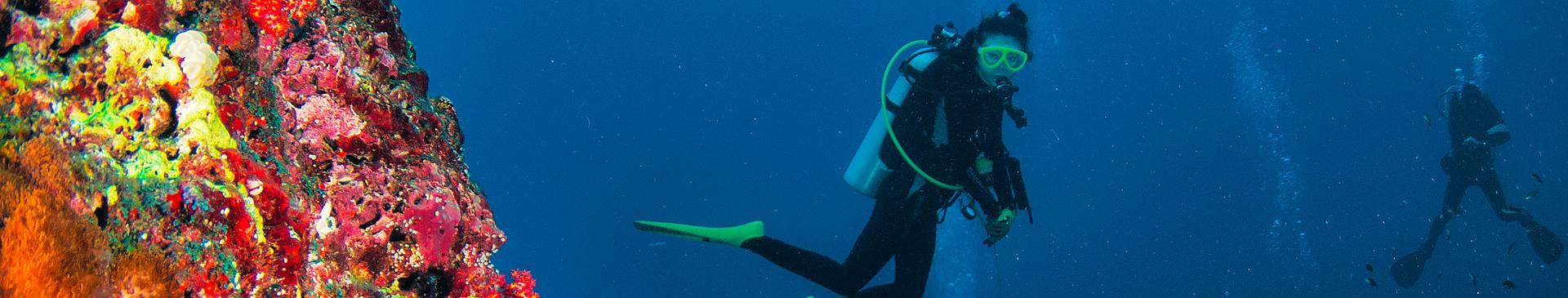 Plongée & Snorkeling en Thaïlande