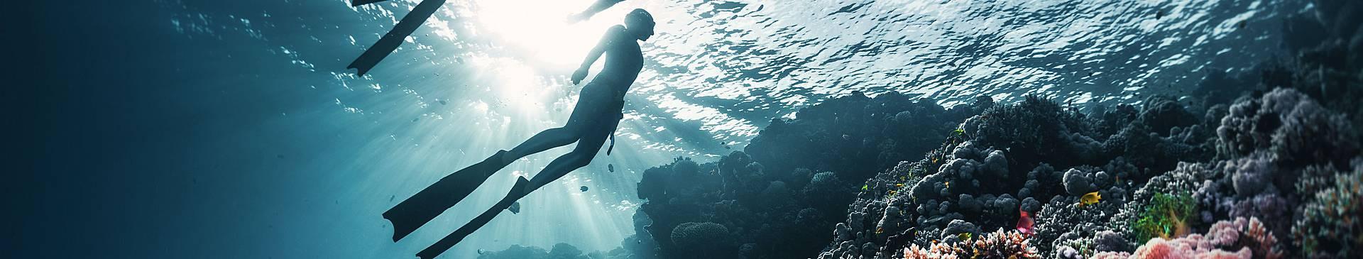 Plongée & Snorkeling en Egypte