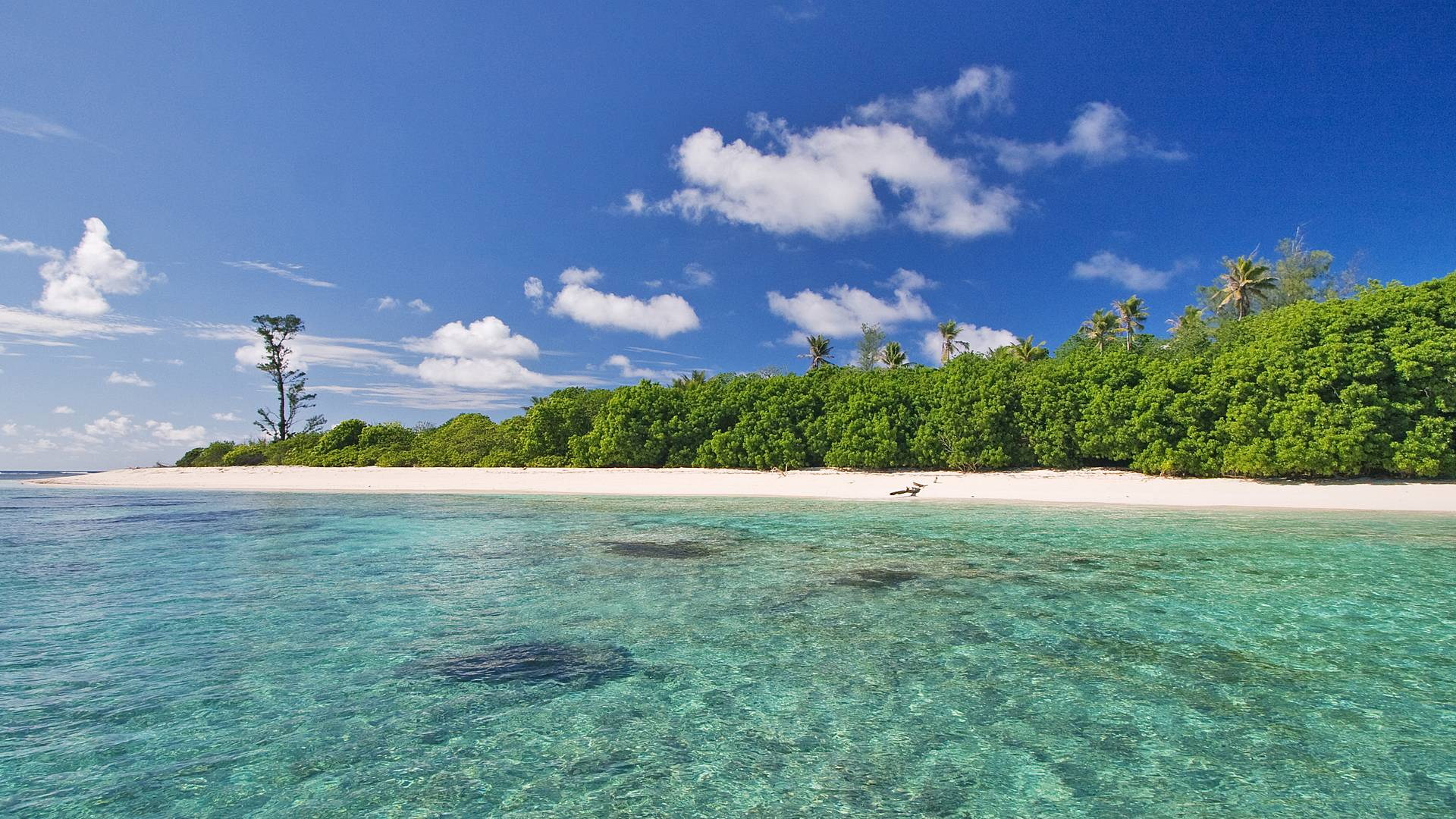 Combiné de Bird Island à Mahé