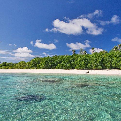 Combiné de Bird Island à Mahé - Bird Island -