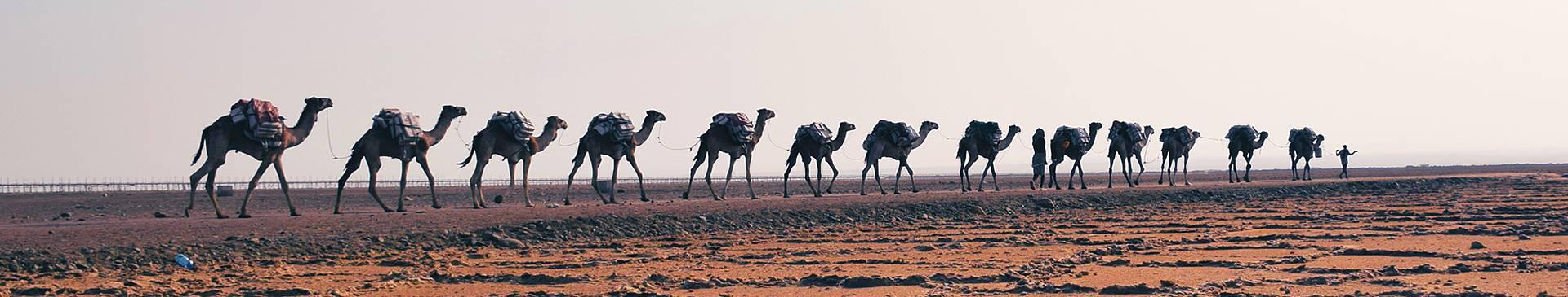 Wüstentour Äthiopien