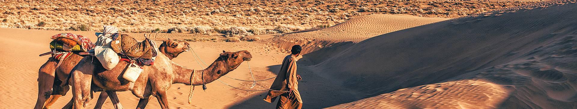 Desert tours in India