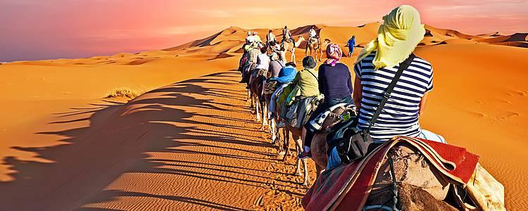 Wüste und Gebirge des Südens in der Gruppe