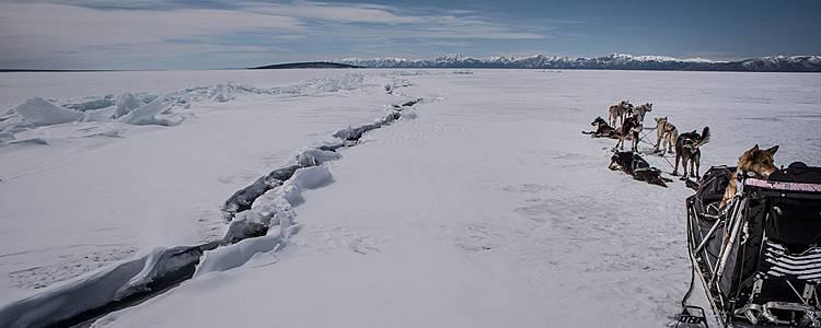 Mit dem Hundeschlitten übers Eis