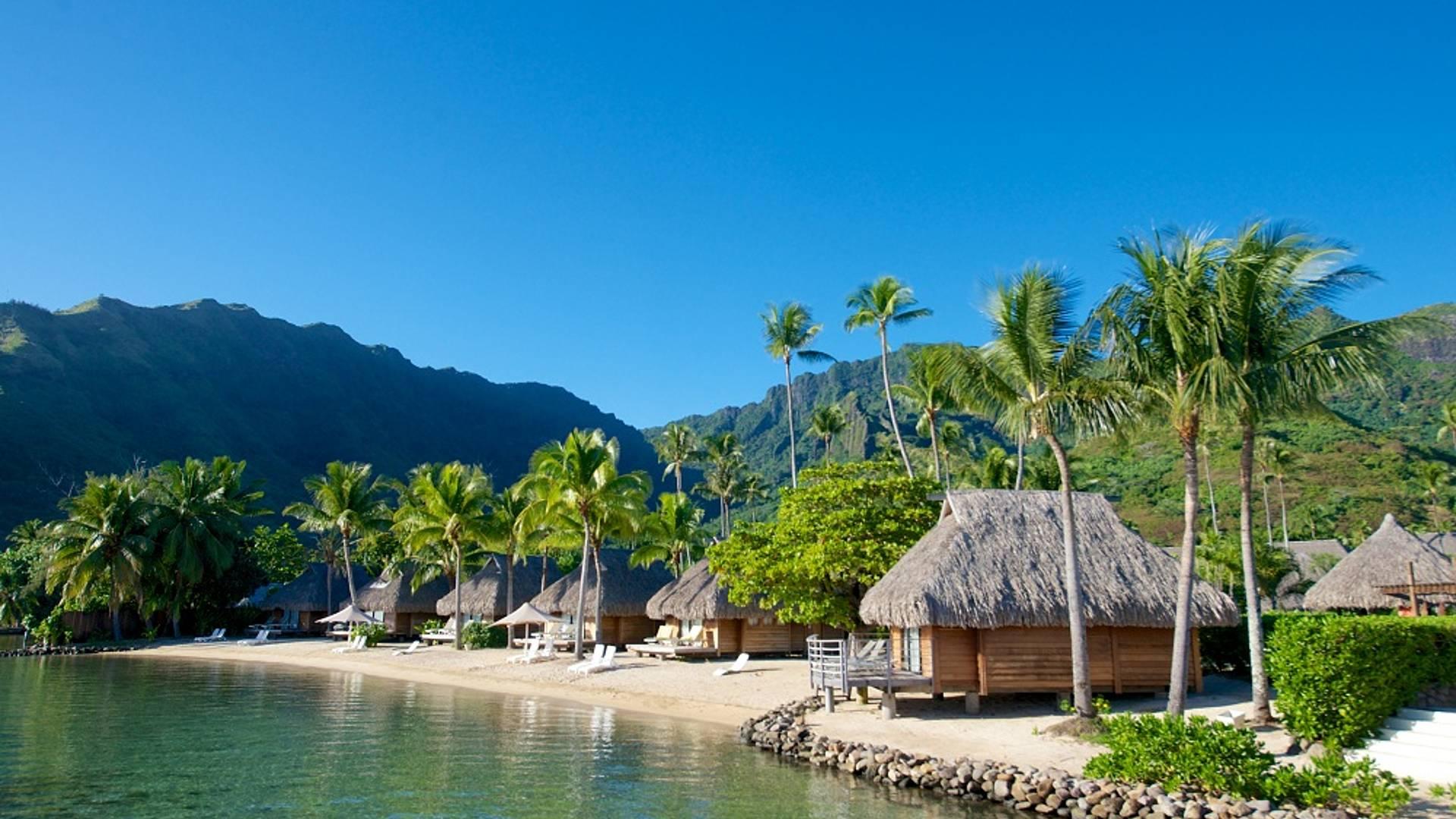 Délices de Moorea, Bora Bora et Tahiti en liberté