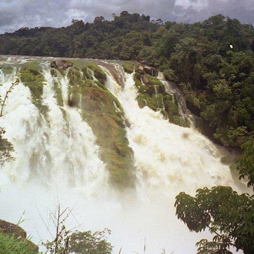 Découverte de l'Amazonie - Caracas -
