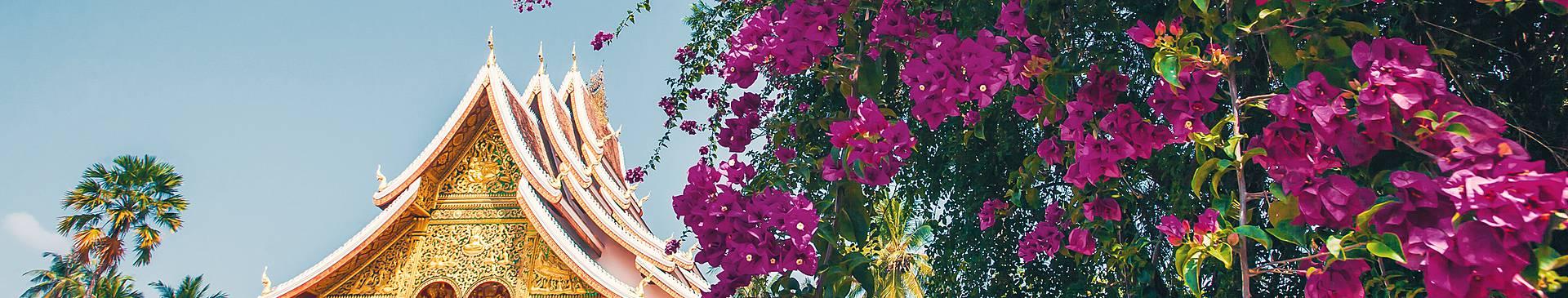 Summer in Laos