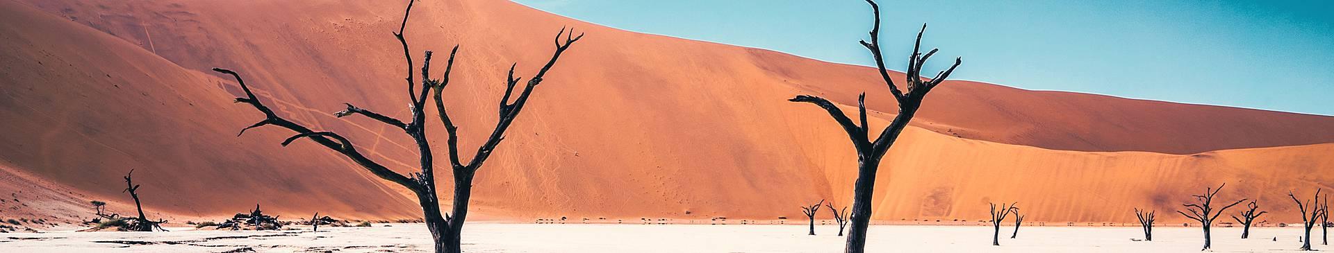 Spring in Namibia