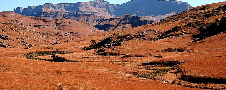 Safaris en terre Tsonga