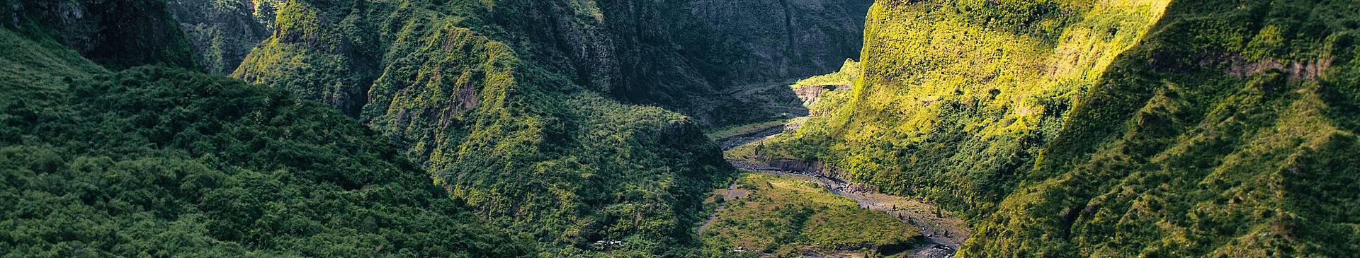 Voyage nature à la Réunion