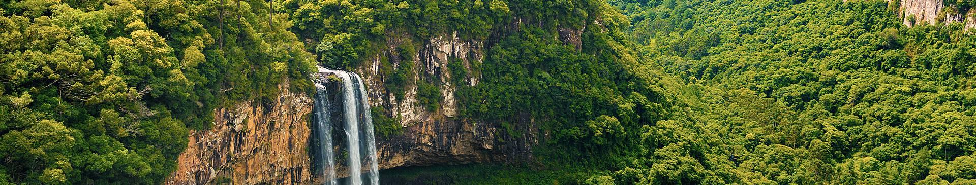 Voyage nature au Brésil