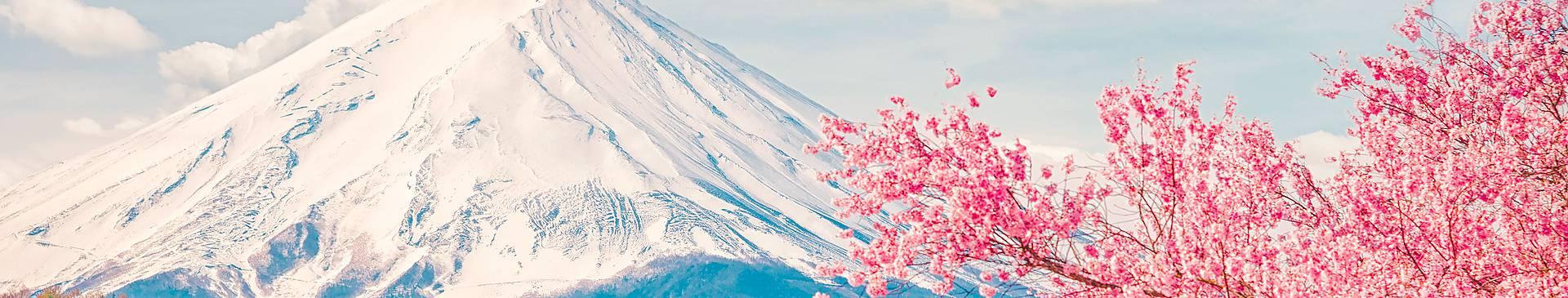 Viaggi in Giappone in primavera