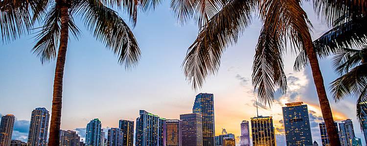 La Florida self-drive