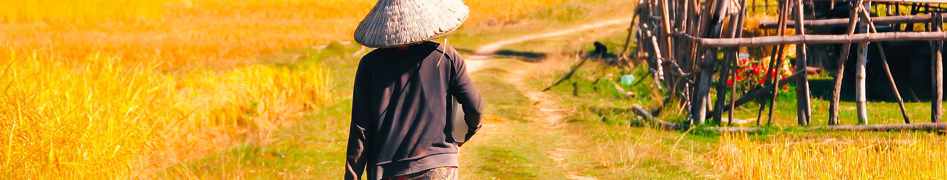 Découverte des îles du Laos