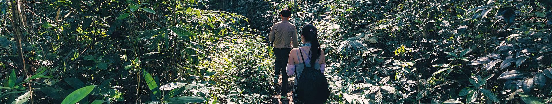 Vietnam jungle tours
