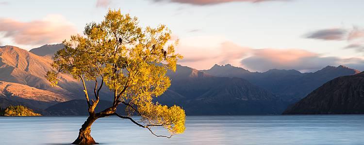 Das Land der Kiwis abseits der Touristenpfade