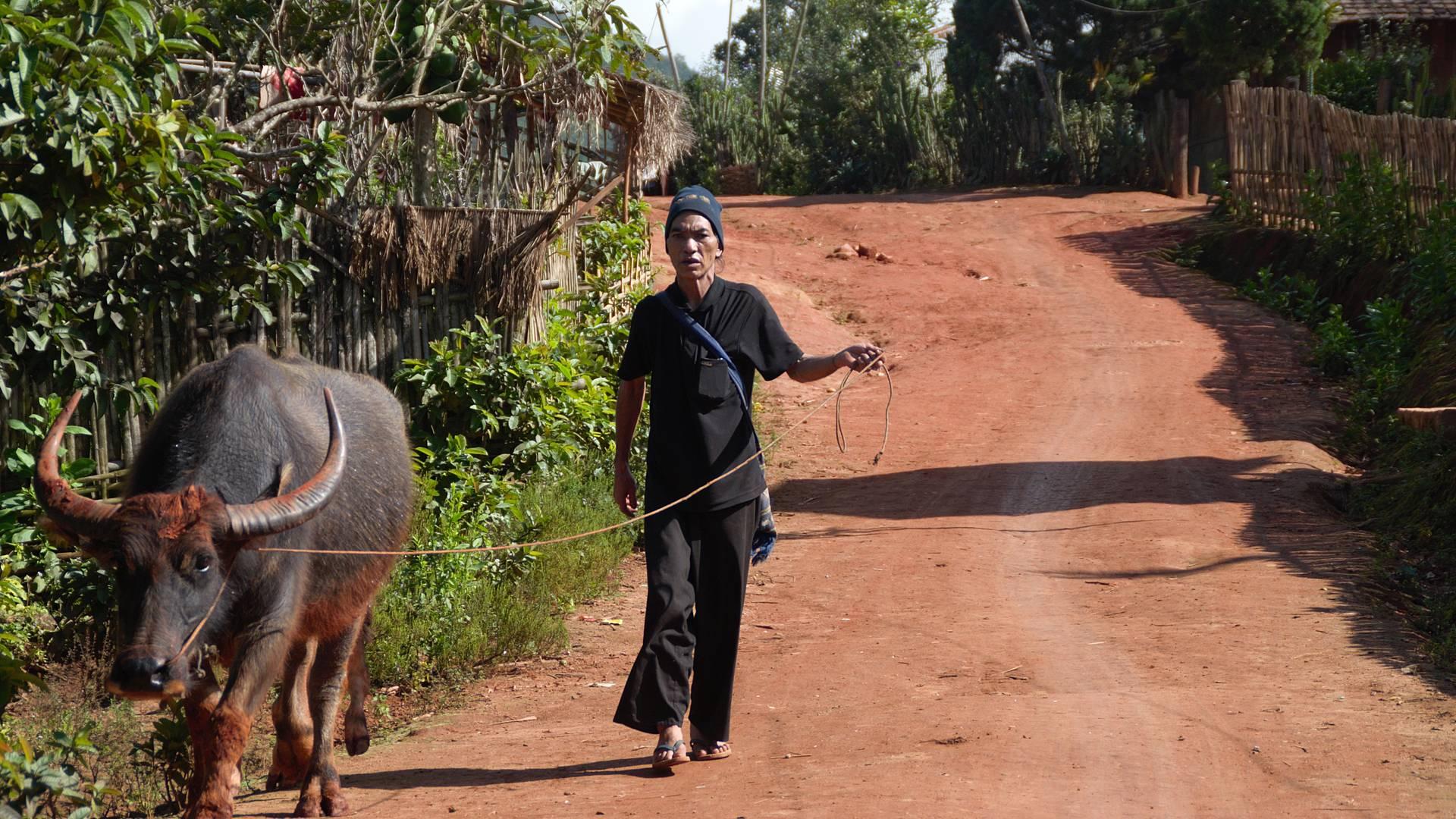 Senderismo en el estado de Shan