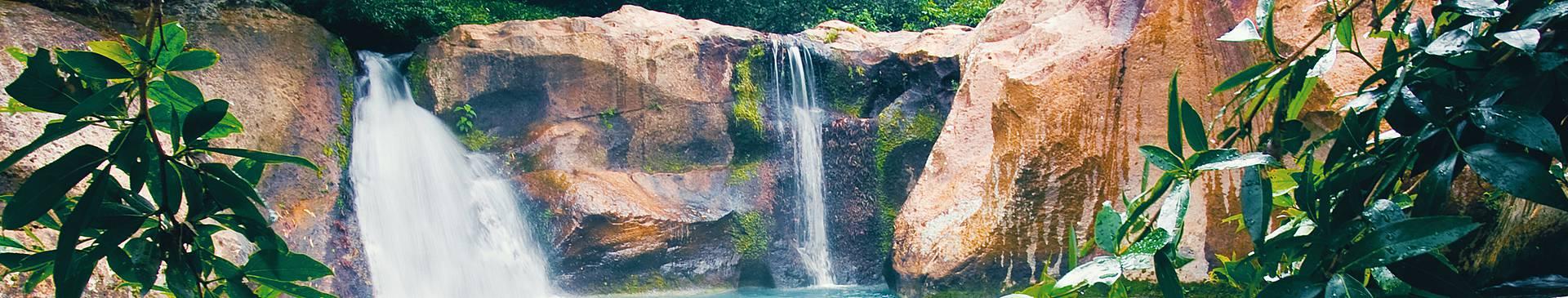 Voyage nature au Costa-Rica