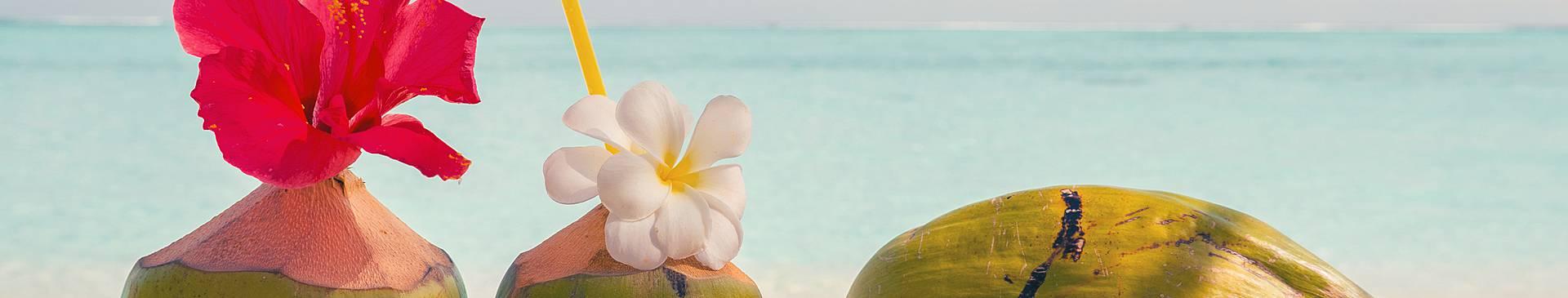 Maldives Honeymoon Vacations