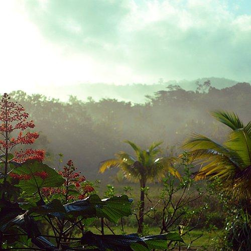 Destination multiculturelle et authentique - Cayenne -