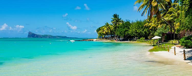 Tra savana e le spiagge paradisiache delle Mauritius
