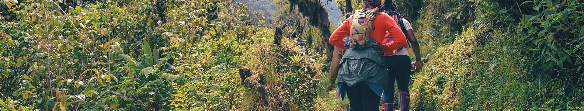 Trekking en Uganda