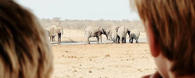 Échappée namibienne en famille