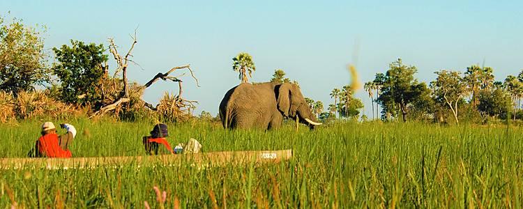 La verdadera Tanzania: Safari, trekking y tribus