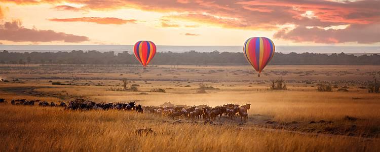 Safaris y naturaleza en Kenia y Tanzania