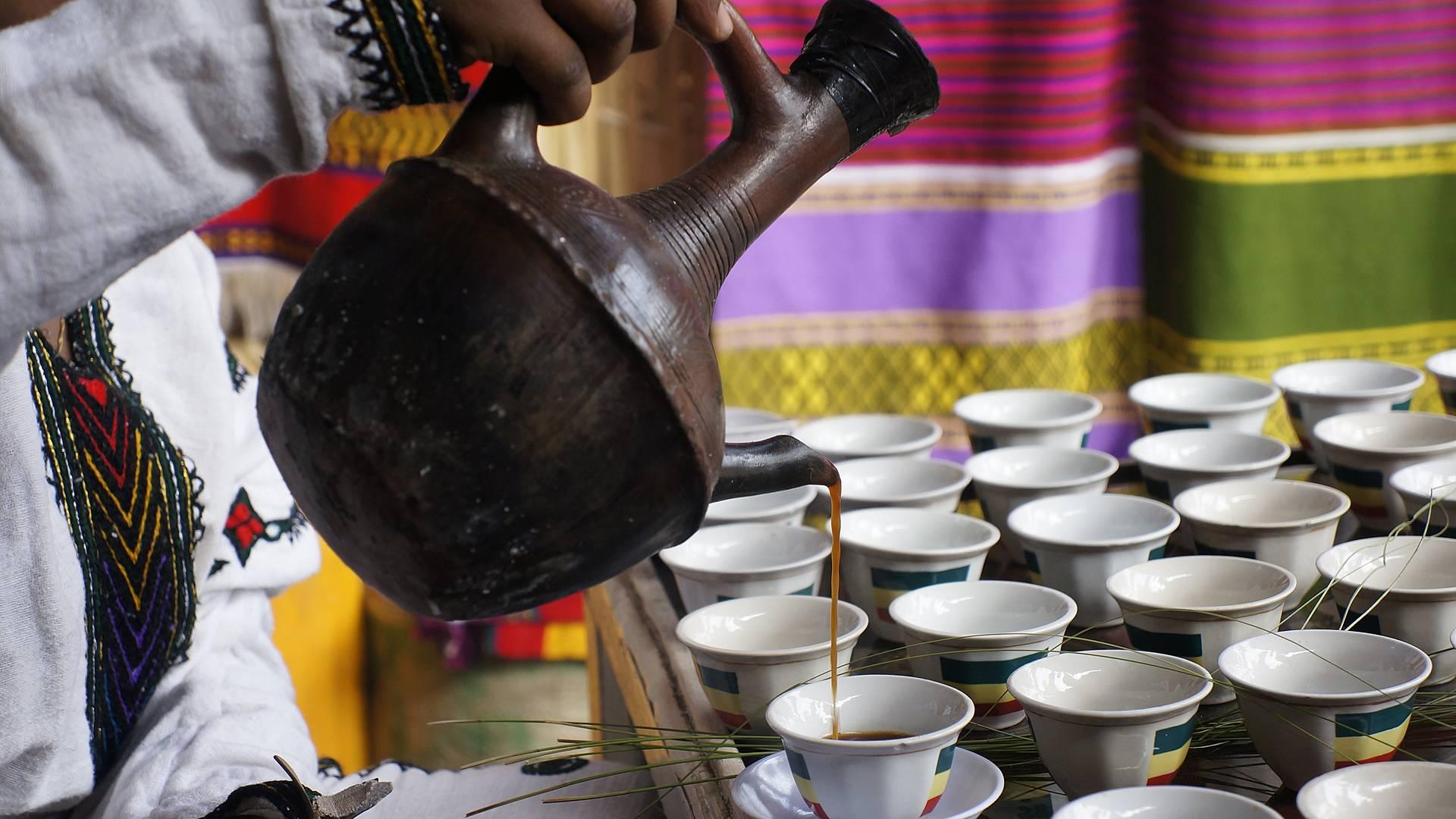 Kaffee, Kaffee, Kaffee - von Harar bis zum letzten wilden Kaffeewald