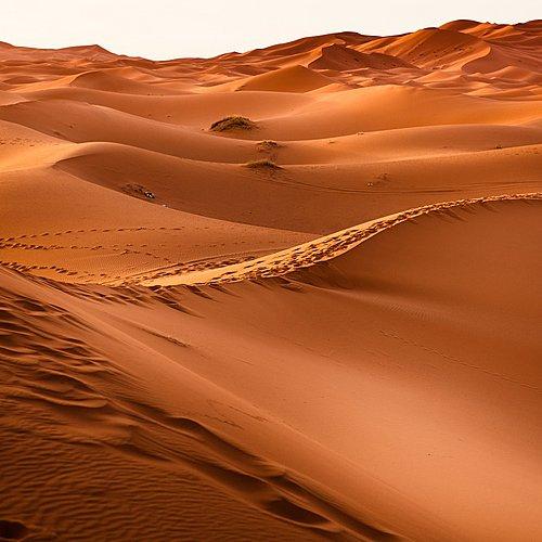 De Marrakech aux dunes du Sahara - Marrakech -