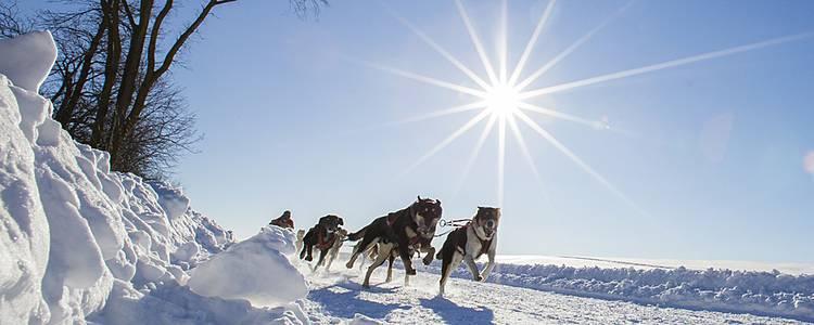 Aventures hivernales au Québec