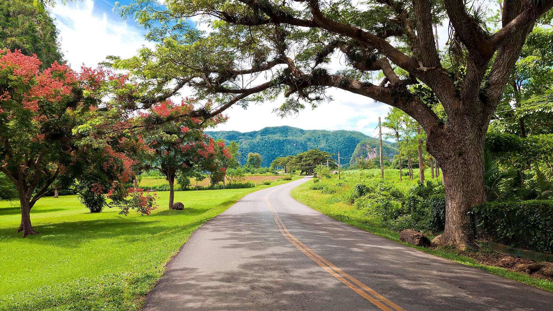 Mietwagentour durch den Westen und das Zentrum der Insel