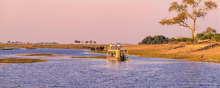 Cataratas Victoria y fauna del Parque Nacional Chobe