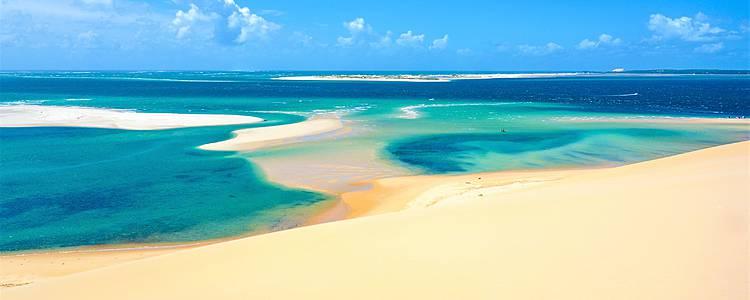 Fauna africana y playas de Mozambique