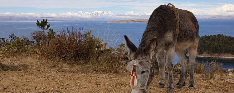 Da La Paz al Salar de Uyuni, un incredible viaggio