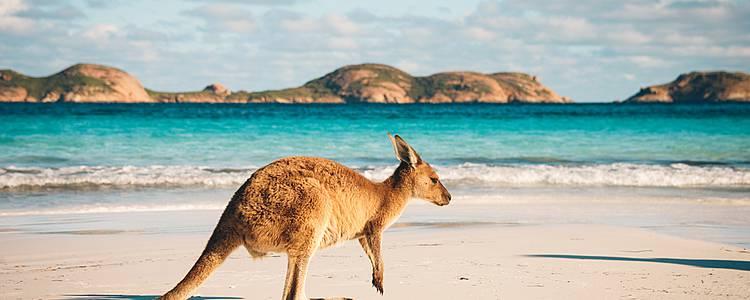 Nel cuore australiano tra Sidney e Ayers Rock