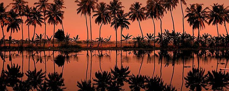 Der Süden: im Land von Tempel und Palmen