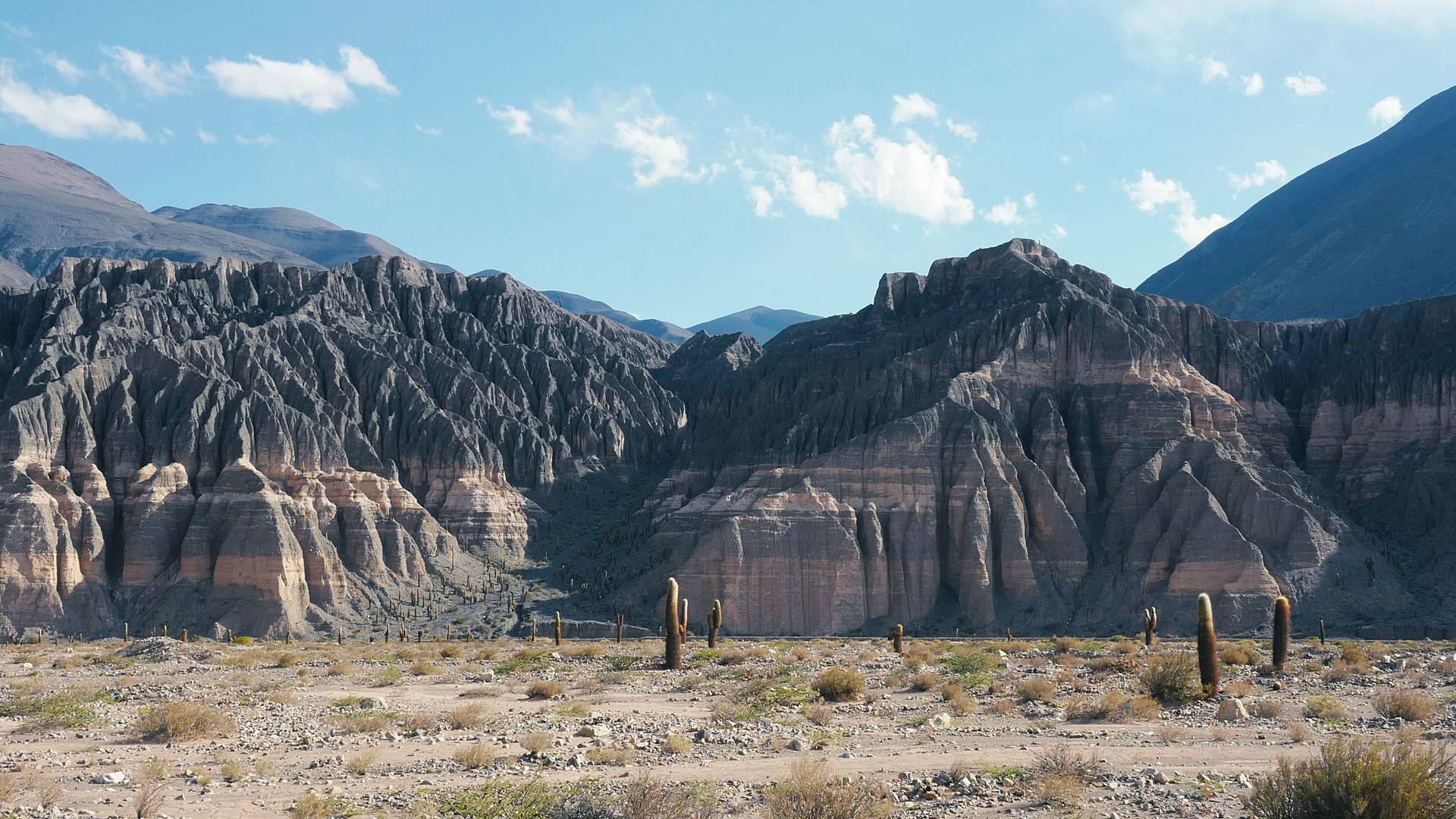 Tra Deserto Andino e Terra del fuoco in self drive