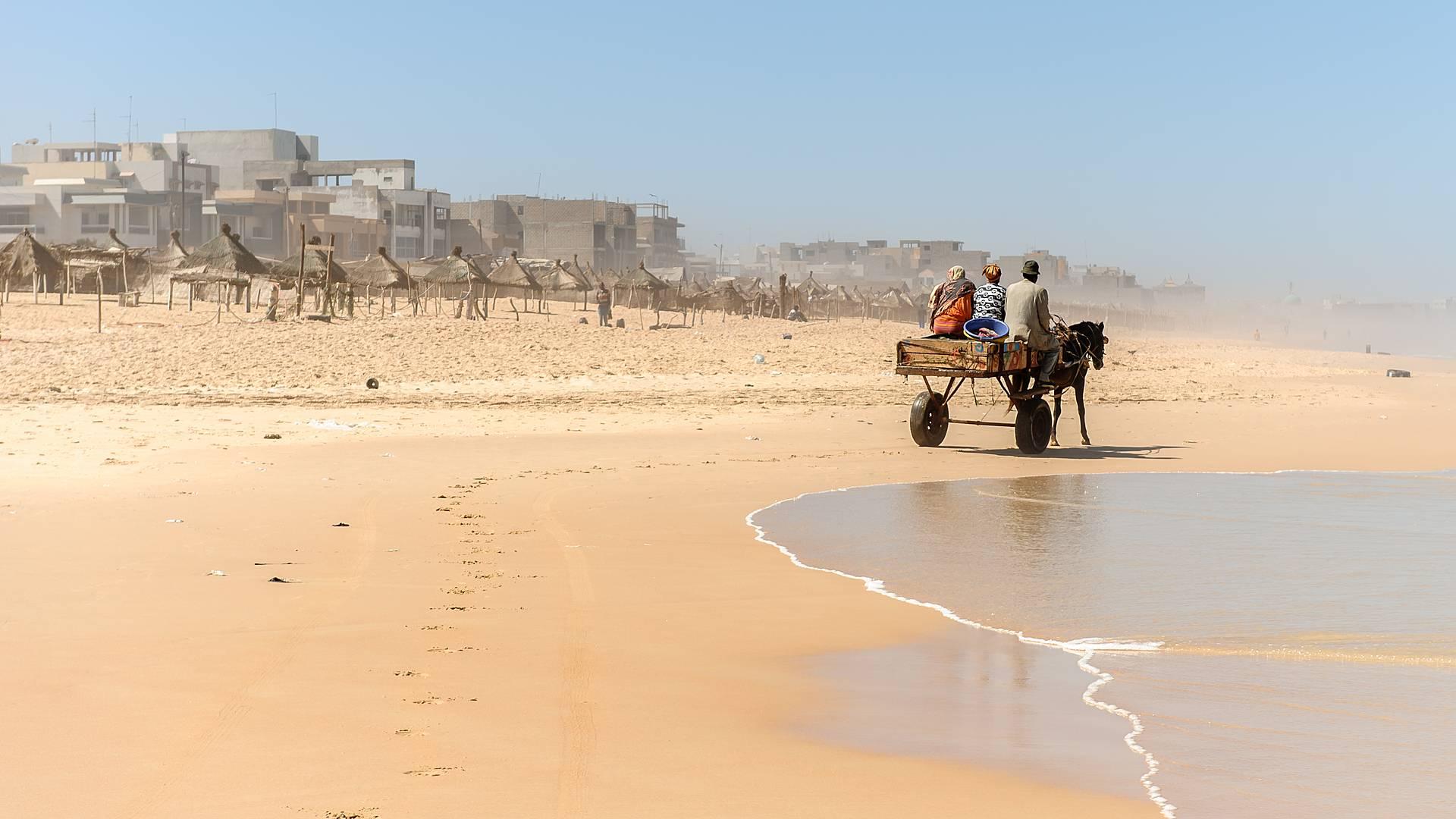 Vom Sahel bis in den tropischen Süden