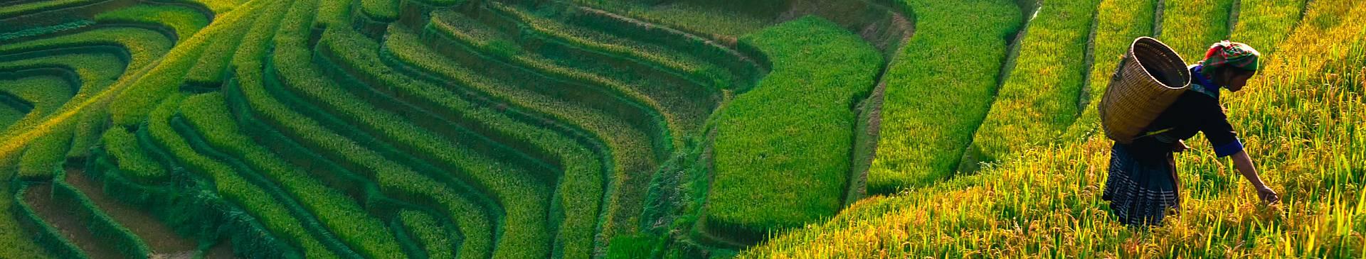 Naturreisen Vietnam