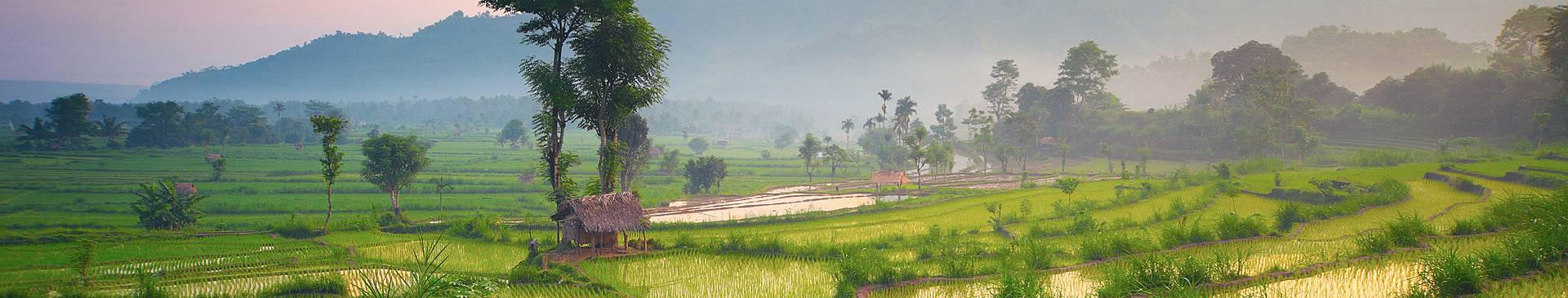 Naturreisen Bali