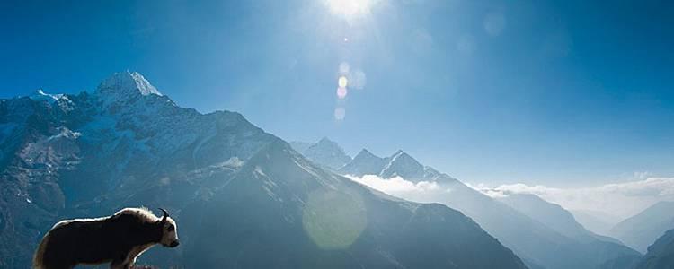 La vallée de Naar Phu, l'Annapurna secret
