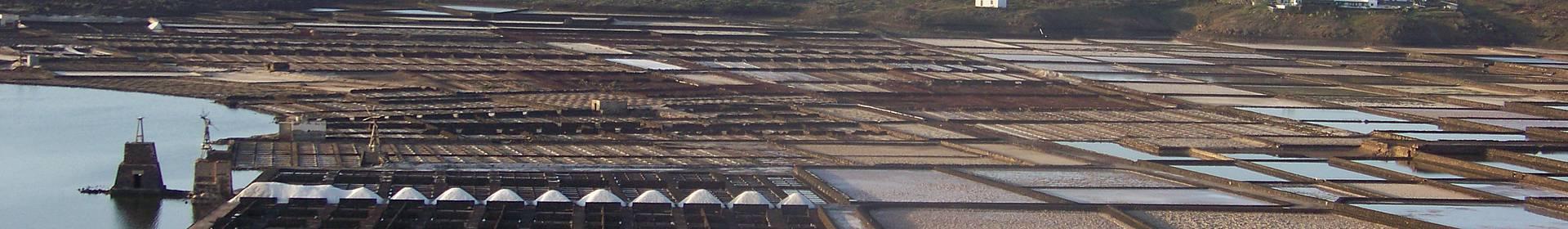 Salinas del Janubio