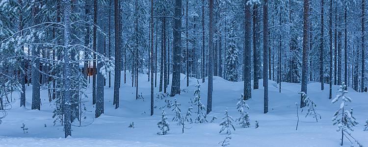 Nel cuore della Lapponia finlandese