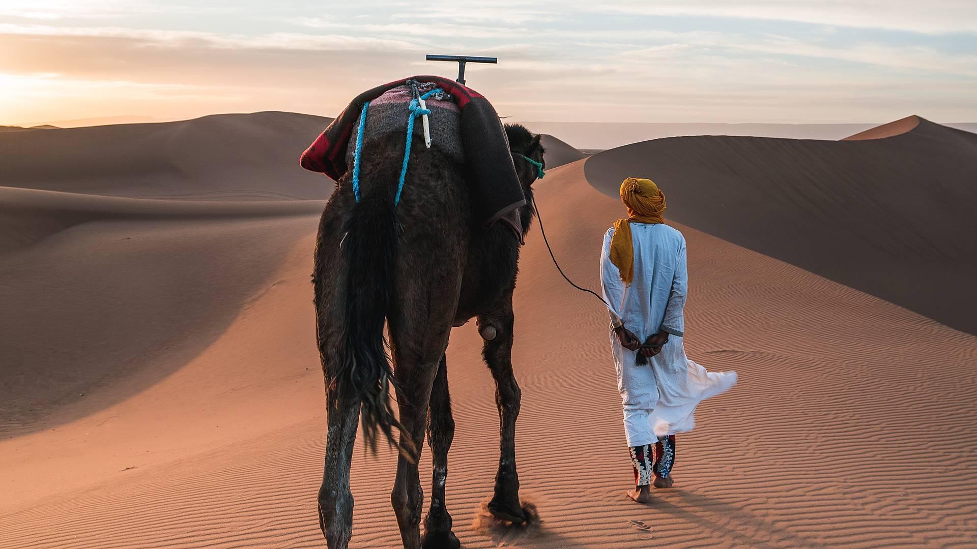 Le vie delle carovane: da Marrakech al Sahara